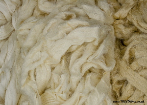 Mulberry & tussah silk comparison; on left - Mulberry silk, on right - Natural Tussah, in middle - Bleached Tussah silk tops | Wild Fibres natural fibres